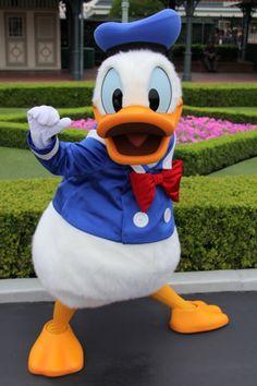 【ディズニー・全身仮装】ドナルド・デイジーの大人用・衣装の作り方♪
